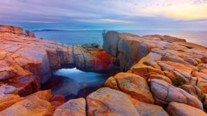 National Parks And Natural Attractions You Should Not Miss In Albany, WA